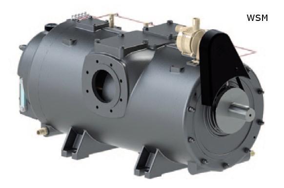Kompressor Serie WSM